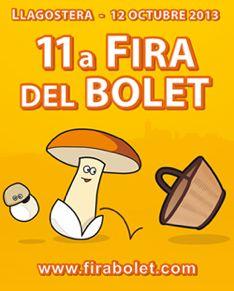 11_bolet_agenda_23.jpg - 16.23 KB